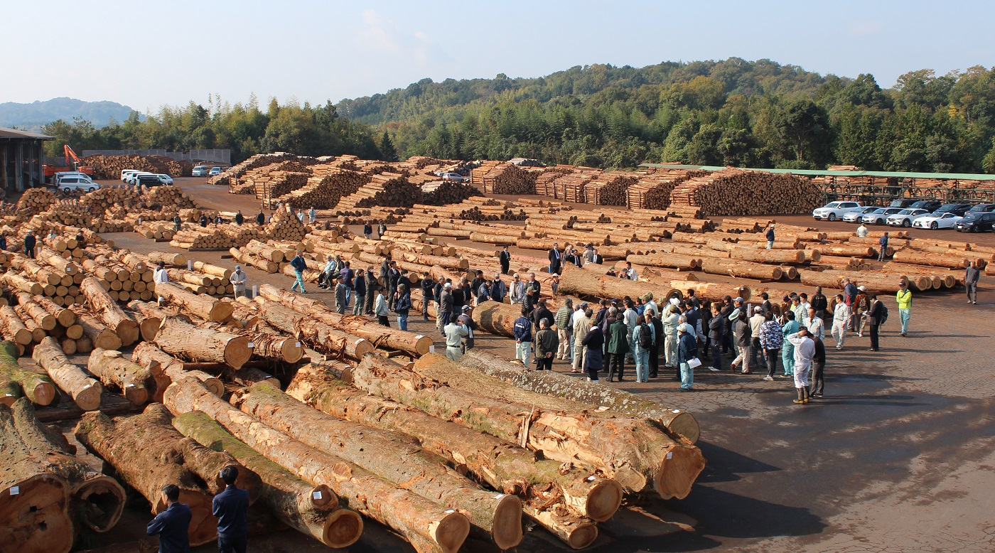 木材・しいたけ共販市況